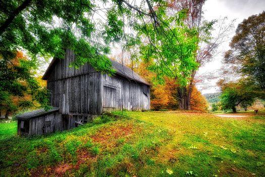 Фото бесплатно Litchfield County, Коннектикут, осень, парк, деревья, строение, сарай, дом, пейзаж