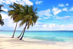 Бесплатные фото тропики, море, пляж