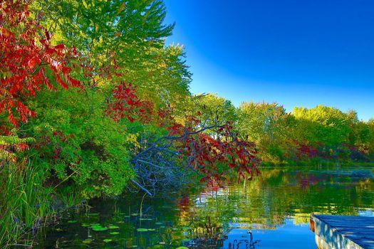 Фото бесплатно осень, док, озеро