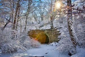 Бесплатные фото Зима,Солнечный заряд,снег,Новая Англия,Массачусетс,речка,мост