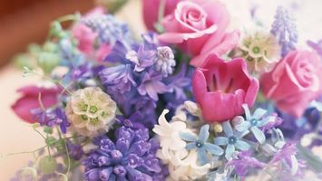 Бесплатные фото spring,flowers,bouquet