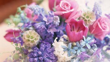 Фото бесплатно spring, flowers, bouquet
