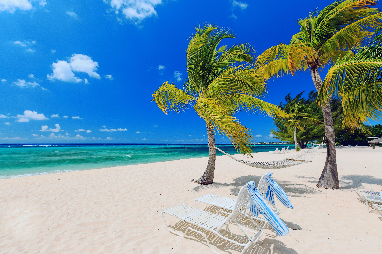 Пляж с желтыми зонтами без смс
