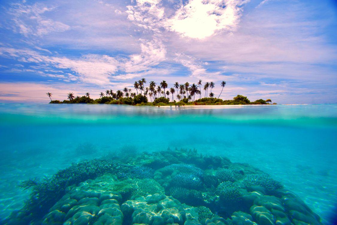 Фото бесплатно тропики, море, остров, природа - скачать на рабочий стол
