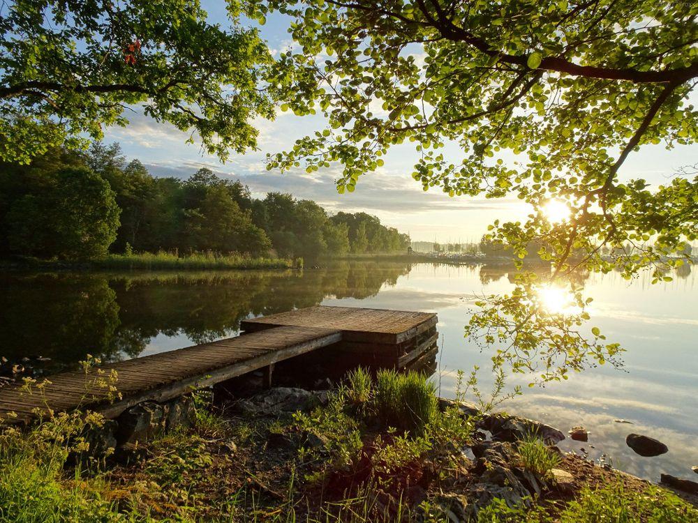 Фото бесплатно закат, озеро, причал, деревья, пейзаж, пейзажи