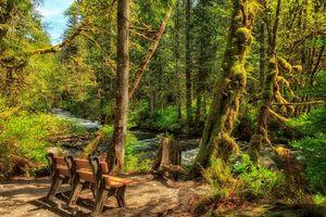 Фото бесплатно Wallace River, Washington, United States
