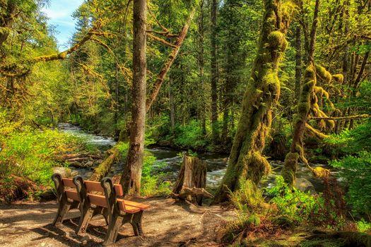 Бесплатные фото Wallace River,Washington,United States