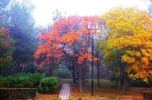 Заставки осень,парк,деревья,лавочка,фонари,пейзаж