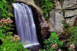 Заставки водопад, скалы, цветы, пейзаж