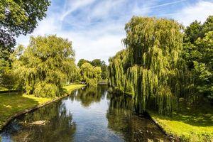 Заставки парк Замка Лидс, Кент, Англия