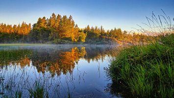 Фото бесплатно Стораватнет, деревья, Норвегия