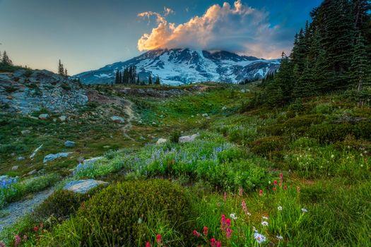 Фото бесплатно Национальный парк Маунт Рейнир, штат Вашингтон, горы