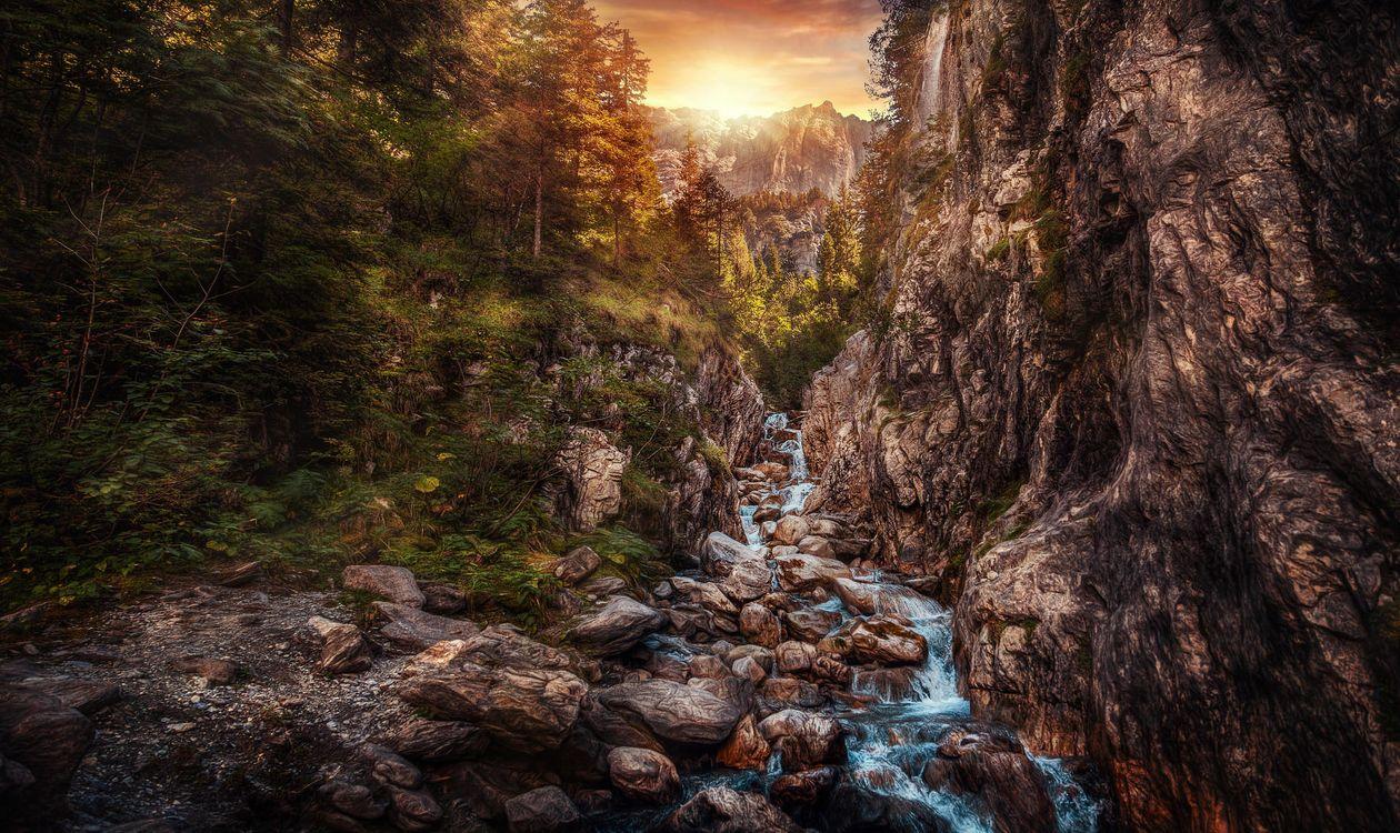 Фото бесплатно Швейцария, Розенлауй, ручей горы, Природа, Пейзаж, горный ручей, лес, пейзажи
