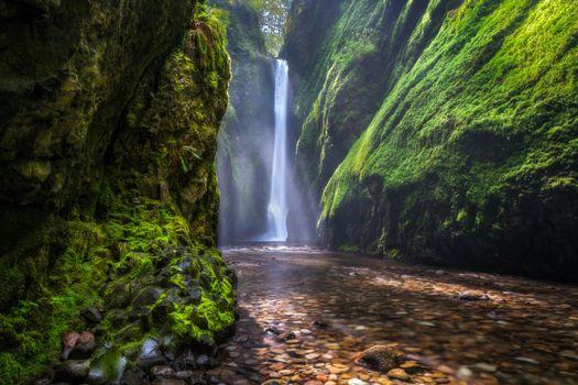 Фото бесплатно Columbia River Gorge, водопад, скалы, деревья, пейзаж