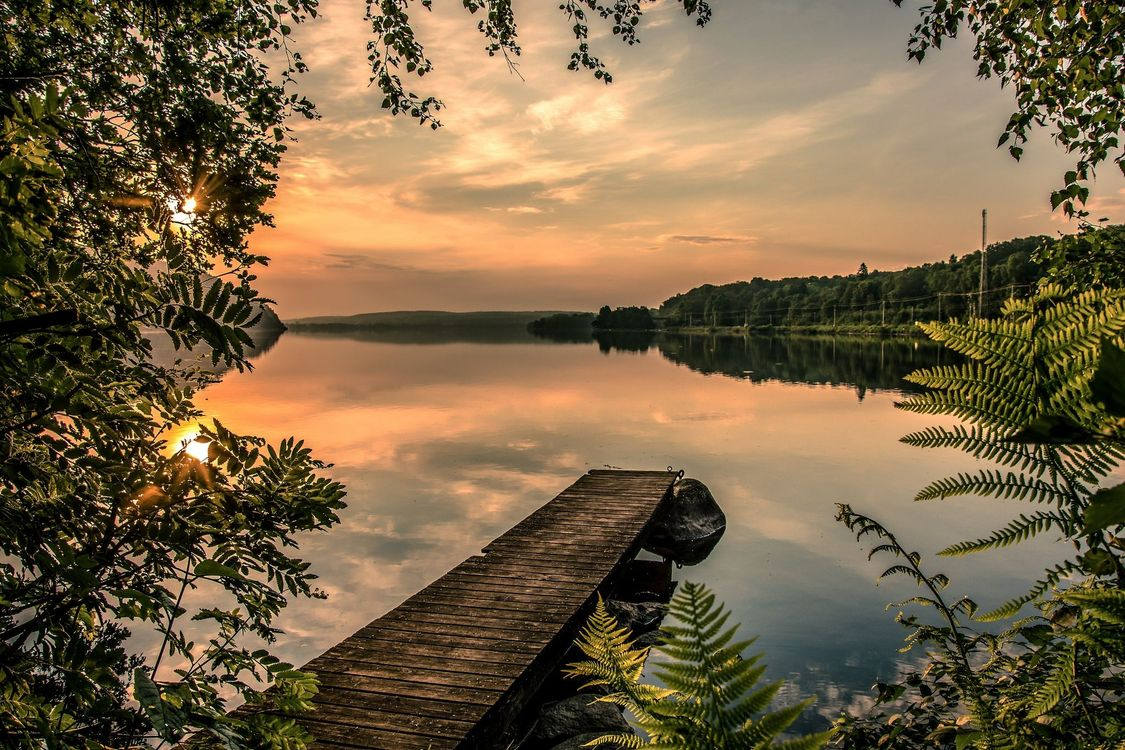 Фото бесплатно закат, озеро, мостик, причал, деревья, пейзаж, пейзажи