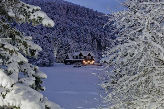 Бесплатные фото зима,снег,деревья,домик,сугробы,ночь,свет,деревья в снегу,пейзаж