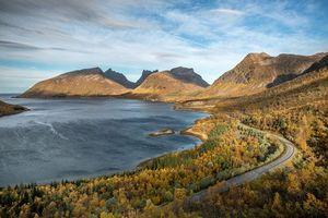 Фото бесплатно деревья, осень, Норвегия