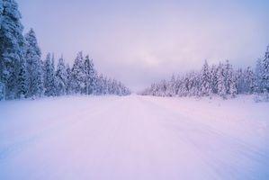 Заставки зима, дорога, лес, деревья, пейзаж