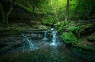 Бесплатные фото лес, деревья, камни, скалы, водопад, природа, пейзаж