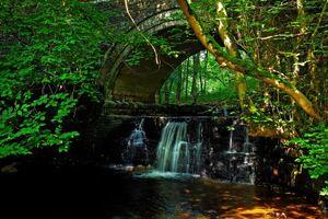 Бесплатные фото лес,деревья,водопад,скалы,водоём,природа