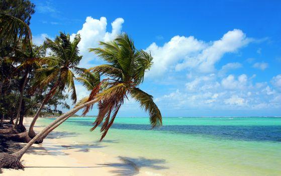 Заставка пляж, тропики на рабочий стол