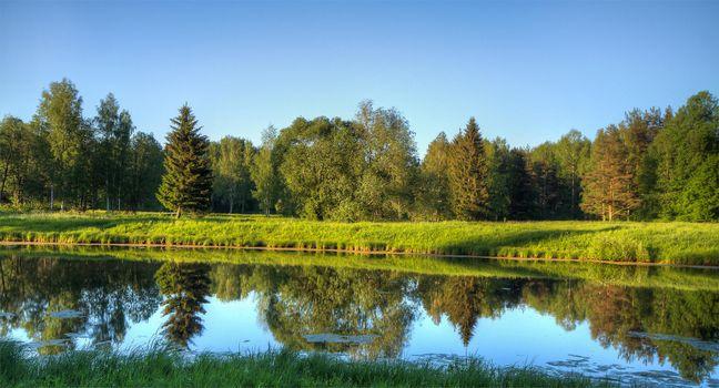 Фото бесплатно Павловский парк под Санкт-Петербургом, река, лес, деревья, пейзаж