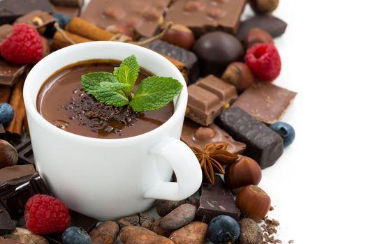 Бесплатные фото горячий шоколад,мята,шоколад,малина