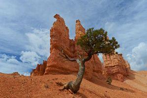 Фото бесплатно скалы, пейзаж, Брайс Каньон Национальный парк