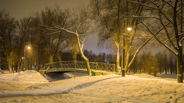 Photo free The bridge in the Moscow victory Park, Park, winter