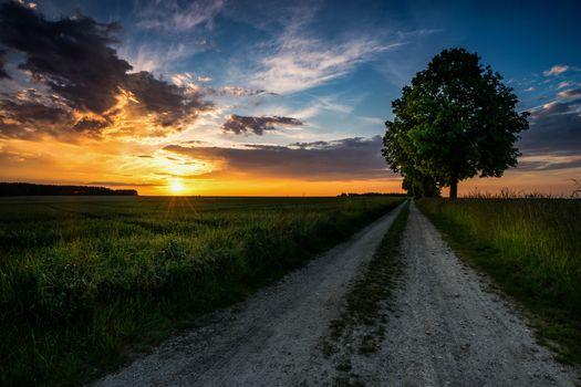 Фото бесплатно вечер, грунтовая дорога, поле