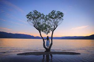 Бесплатные фото закат, водоём, горы, деревья, девушка, пейзаж