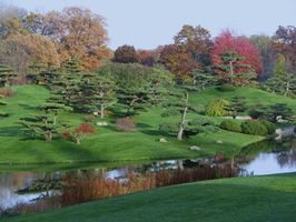 Обои японский сад, парк, деревья, холмы, водоём, пейзаж