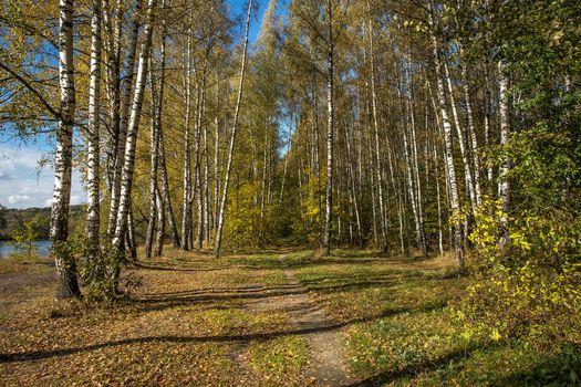 Photo free landscape, Russia, Arkhangelsk