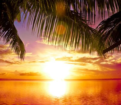 Заставки тропики, море, закат