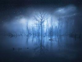 Бесплатные фото ночь,водоём,озеро,свечение,деревья,туман,пейзаж