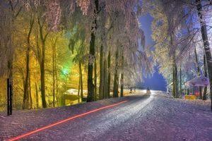 Бесплатные фото зима,снег,деревья,дорога,иллюминация,ночь,пейзаж