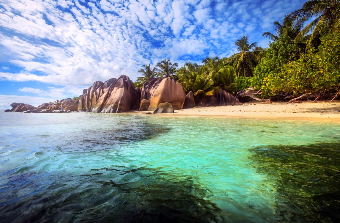 Фото бесплатно море, пляж, остров, пальмы, отдых, тропики, Сейшелы, пейзажи