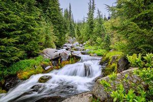 Заставки река, водопад, лес, деревья, природа