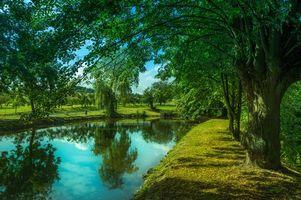 Бесплатные фото парк,пруд,озеро,деревья,дорога,пейзаж