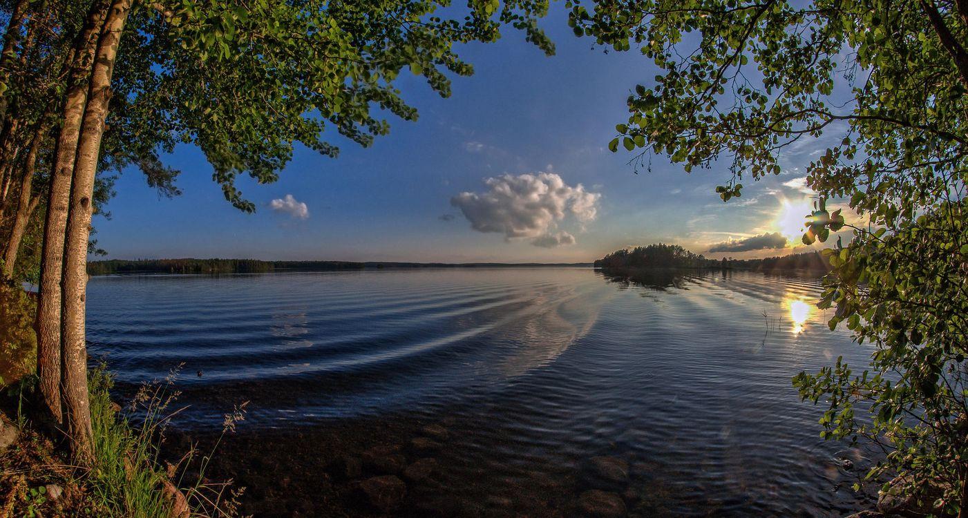 Обои закат, озеро, деревья, Финляндия, небо, отражение, пейзаж на телефон | картинки пейзажи