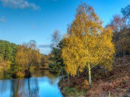 Photo free autumn, pond, lake