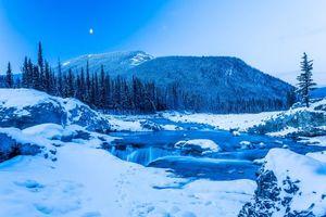 Бесплатные фото Зима,Кананаскис,снег,деревья,водопад,Альберта,Канада