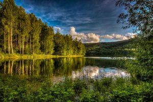 Бесплатные фото река,лес,деревья,закат,пейзаж