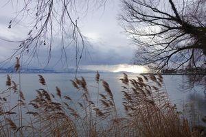 Фото бесплатно Лозанна, Швейцария, озеро, тучи, деревья, пейзаж