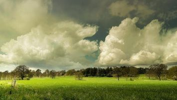 Заставки поле, небо, облака, пейзаж, деревья