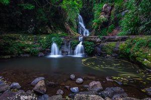 Фото бесплатно Lamington National Park, водопад, водоём, камни, скалы, пейзаж