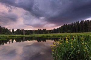 Фото бесплатно Швейцария, озеро, закат