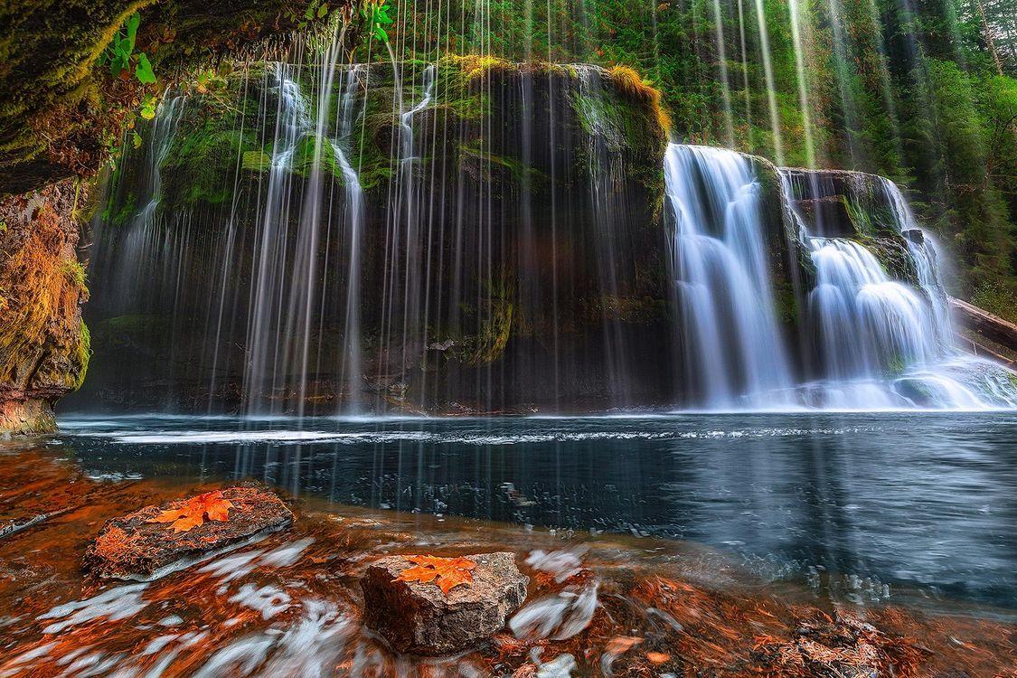 Фото бесплатно Washington, Lower Lewis River Falls, Национальный лес Гиффорда, Пинхота, водопад, пейзажи