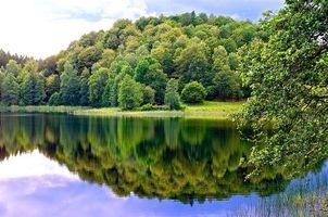 Бесплатные фото река,берег,деревья,пейзаж