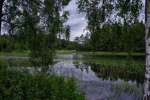 Фото бесплатно закат, озеро, тучи
